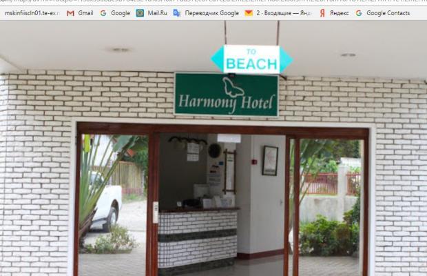фотографии Harmony изображение №8