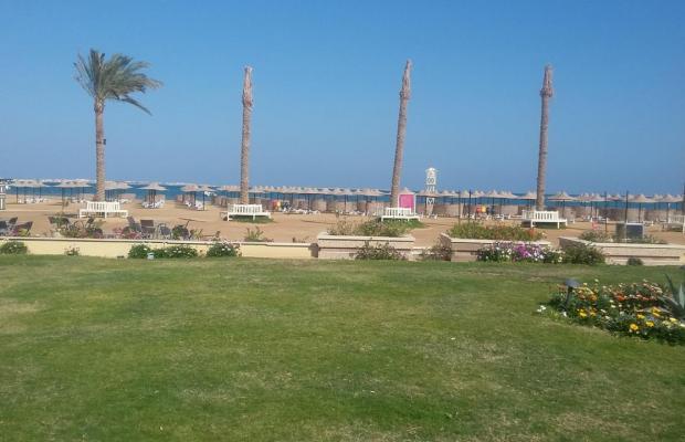 фото отеля Movenpick Resort Soma Bay изображение №9