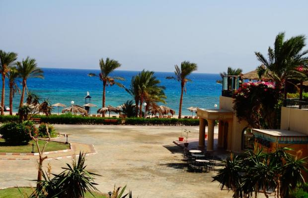 фотографии отеля La Playa Beach Resort Taba (ex. Sol Taba Red Sea; Sonesta Beach Resort Taba) изображение №7