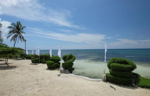фотографии Dive Thru Resorts изображение №8