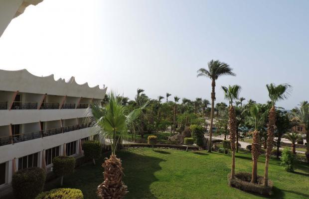 фото отеля Coral Resort Nuweiba (ех. Hilton Nuweiba Coral Resort) изображение №21