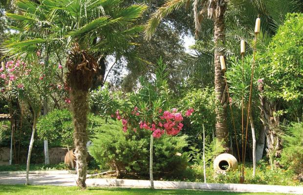 фотографии отеля Sentido Marina Suites (ex. Paloma Rina Hotel; Rina Apart Hotel) изображение №3