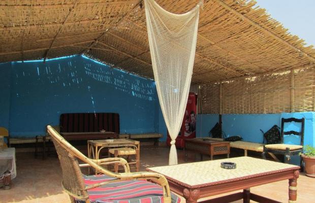 фото отеля Arabian Nights изображение №13
