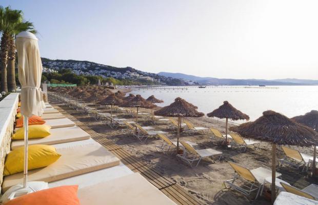 фотографии отеля Cocos The Club (ex. Sentido Bodrum Beach; Camel Bodrum Beach Club) изображение №27