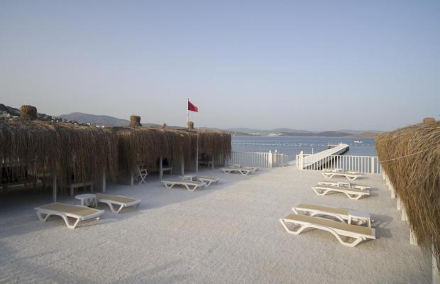 фото отеля Cocos The Club (ex. Sentido Bodrum Beach; Camel Bodrum Beach Club) изображение №5