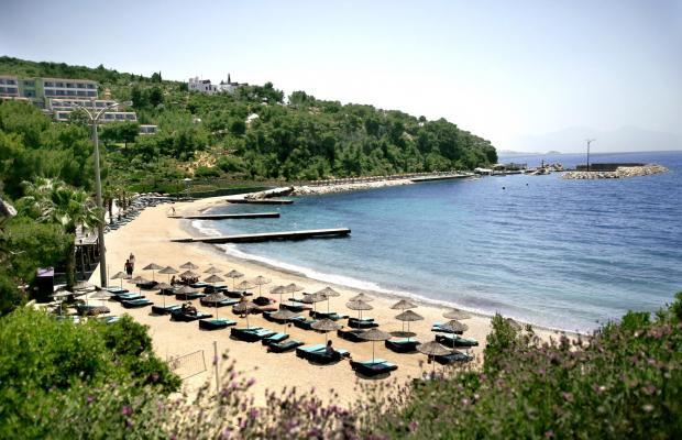 фотографии Pine Bay Holiday Resort изображение №48