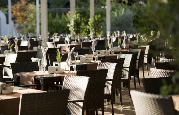 фотографии Q Premium Resort изображение №8