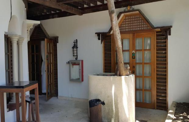 фото Tropicana Castle Dive Resort изображение №22