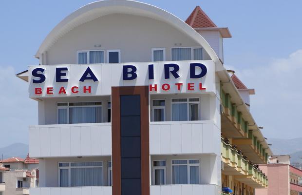 фотографии Sea Bird Beach Hotel изображение №8