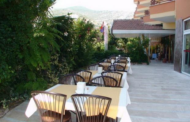 фото Kleopatra City Hotel (ex. Selvi Hotel) изображение №2
