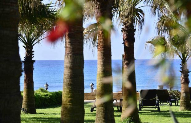 фото отеля Harmony Park Villa Augusto изображение №69
