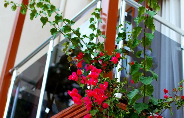 фотографии отеля Pyara Hotel (ex. Eden Hotel) изображение №11