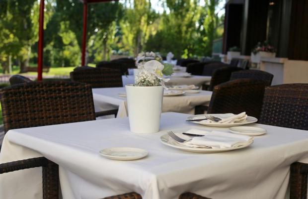 фото отеля Torremangana изображение №13