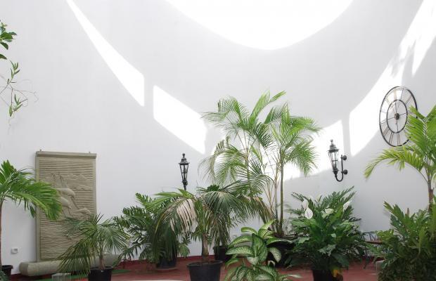 фото отеля Playa Delphin изображение №17