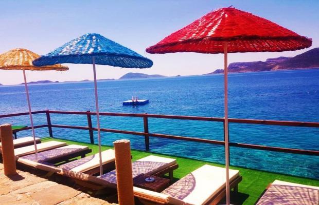 фотографии Amphora Hotel изображение №24
