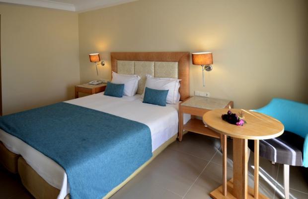 фотографии Danai Hotel & SPA изображение №24