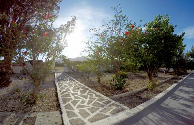 фотографии Eco Beach And Magic Garden Hotel (ех. Wavehouse; Dennis Beach Studios) изображение №16