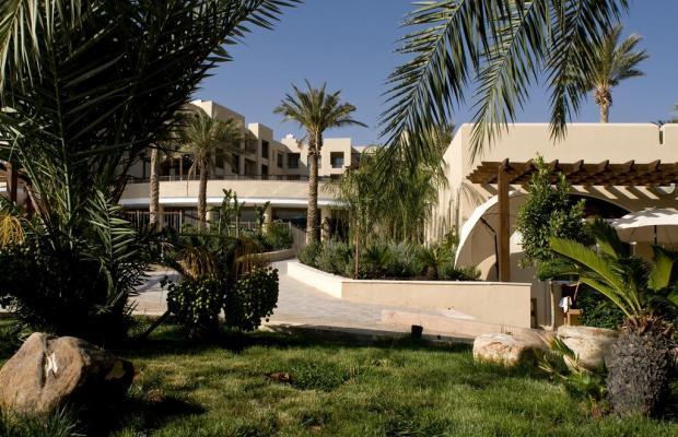 фотографии отеля Dead Sea SPA изображение №15