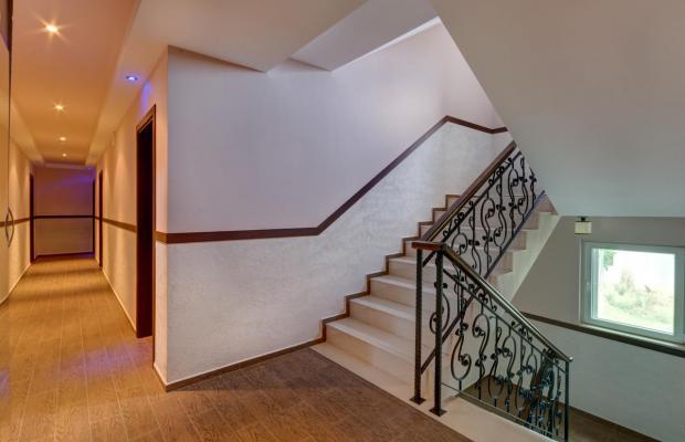 фото Siena House (Сиена Хаус) изображение №22