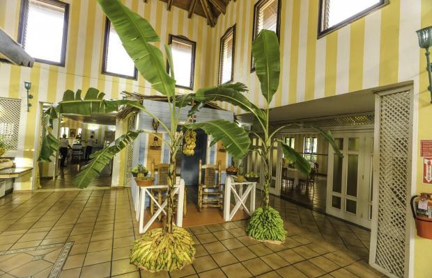 фотографии Bellevue Dominican Bay (ex. Hotetur Dominican Bay) изображение №20