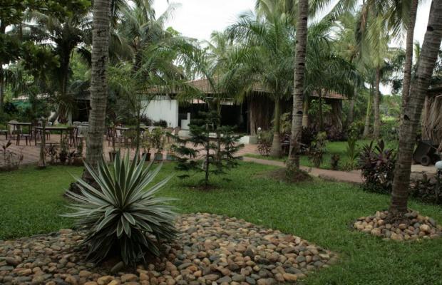 фотографии Palm Resort изображение №12